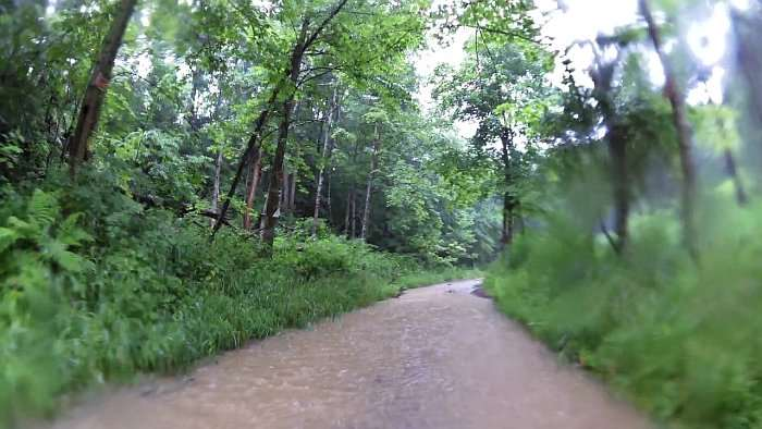 Up a creek road without a paddle.
