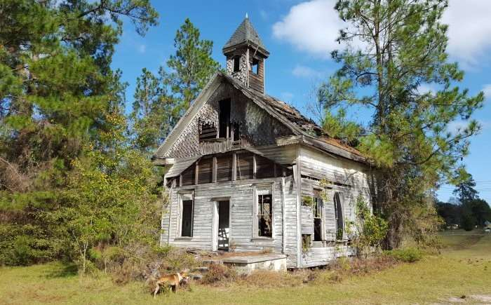 Abandoned church as dog relieves himself.