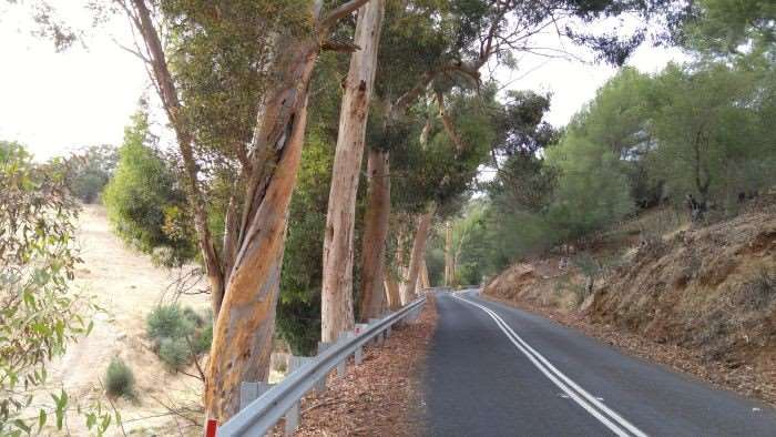 Any cyclist from Adelaide will recognise this view.
