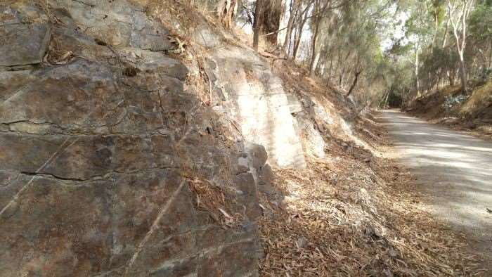 Evidence along the rail trail of how this cutting was created.