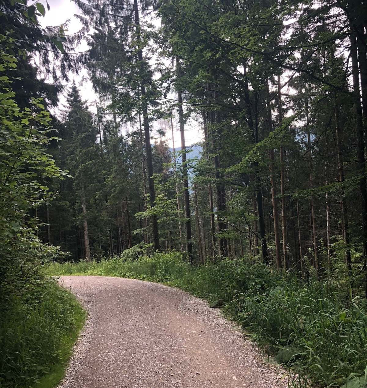 gravel cycling in germany