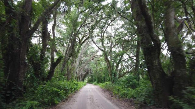 gainesville florida gravel cycling