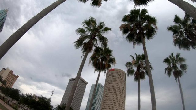 touring downtown tampa by bicycle