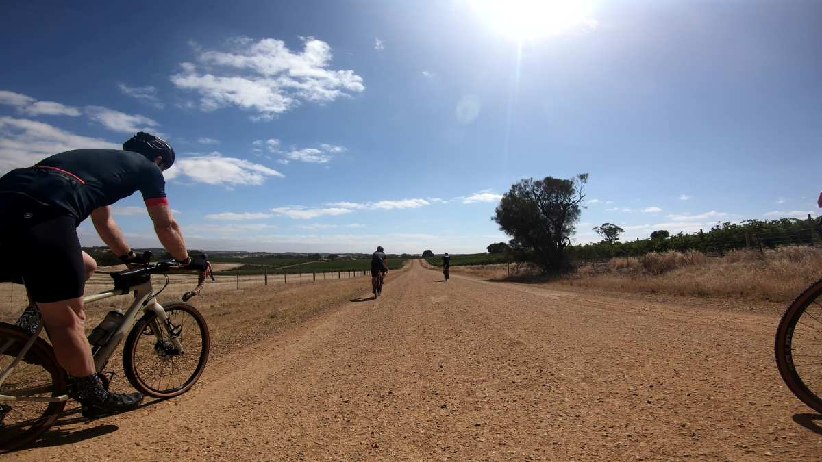 gravel cycling in the barossa valley
